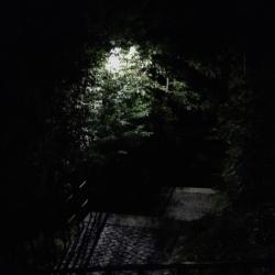 Felix Öller – Sankt Peter, Nachtspaziergang