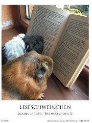 Leseschweinchen
